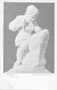 image of Michelangelo's Scultpure,