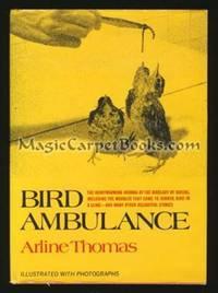 Bird Ambulance