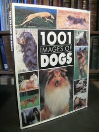 image of 1001 Images of Dogs