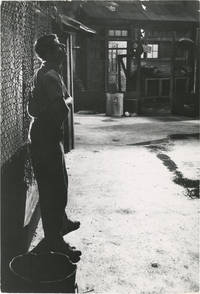 The Delicate Delinquent (Collection of four photographs from the 1957 film)