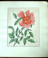 image of Les Roses Aquarelles et Dessins