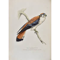 Fauna Boreali-Americana, or, The Zoology of the Northern Parts of British America: containing descriptions of the objects of natural history collected on the late northern land expeditions, under command of Captain Sir John Franklin, R.N.