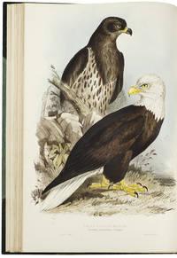 The Birds of Europe