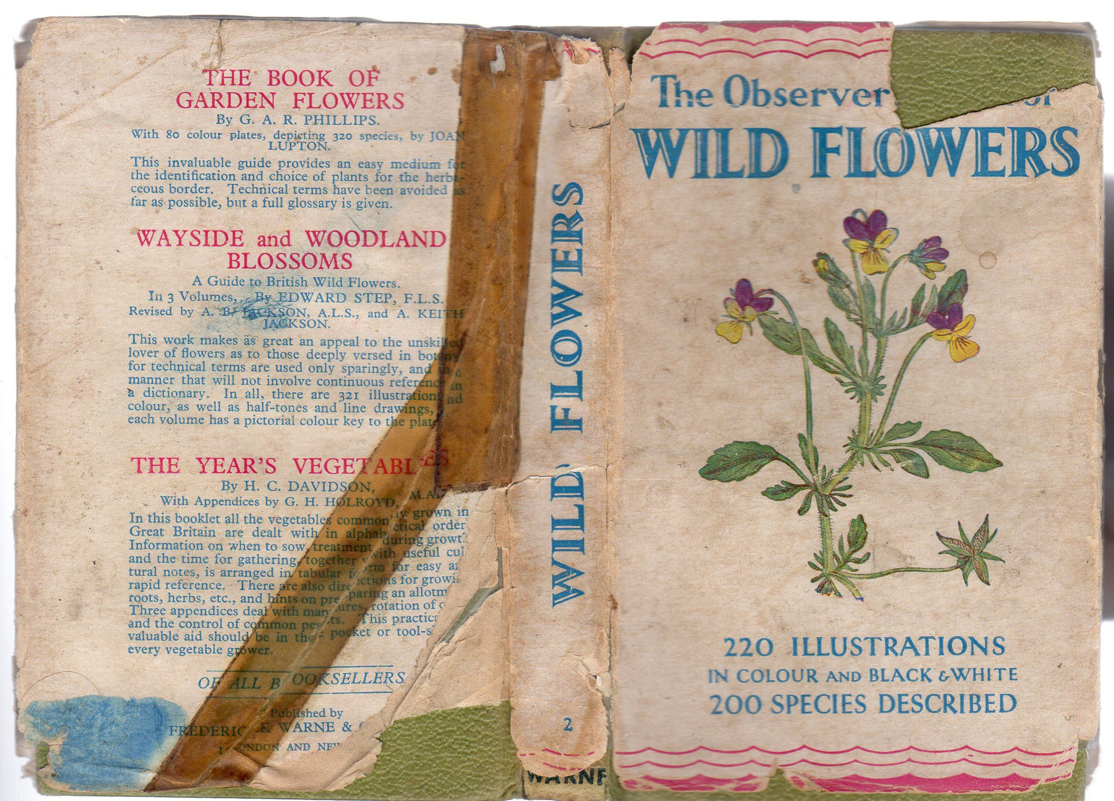 The Observer's Book of Wild Flowers by W. J Stokoe - Hardcover - Reprint -  1956 - from YesterYear Books and Biblio.com
