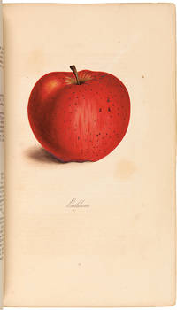The Fruits and Fruit Trees of America; or, The Culture, Propagation, and Management, in the Garden and Orchard, of Fruit Trees generally...