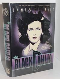 image of Black Dahlia