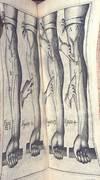View Image 4 of 4 for Exercitatio anatomica de cordis et sanguinis motu. Cum praefatione Zachariae Sylvii Medici Roterodam... Inventory #WH001b