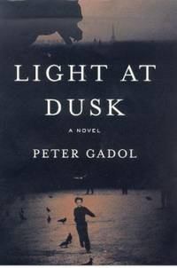Light at Dusk : A Novel