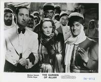The Garden of Allah (Collection of 8 photographs from the 1936 film)