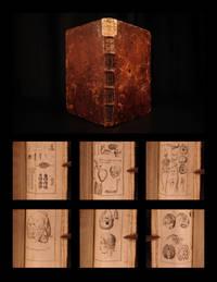 Anatomische Tabellen: nebst dazu gehörigen und Kupfern, daraus des ganzen menschlichen...