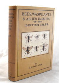 Bees, Wasps, Ants and Allied Insects of the British Isles