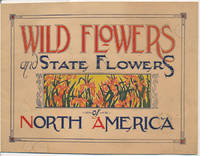 Wild Flowers and State Flowers of North America by  Lydia Northrop GILBERT - Paperback - First Edition - 1930 - from Main Street Fine Books & Manuscripts, ABAA (SKU: 45460)