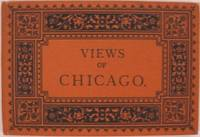 image of VIEWS OF CHICAGO