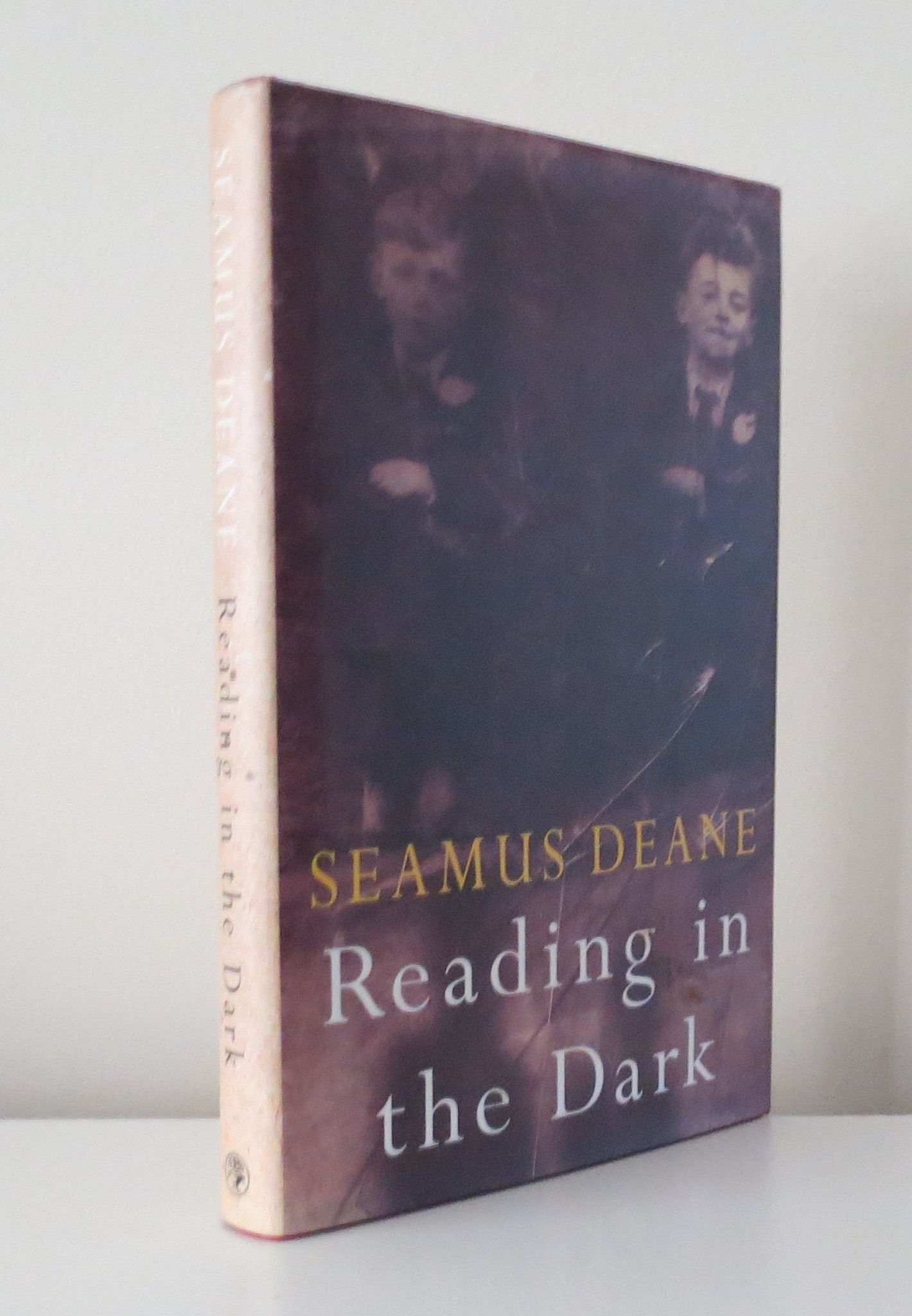 politics in reading in the dark by seamus deane Reading in the dark: a novel [seamus deane] on amazoncom free shipping on qualifying offers a new york times notable book winner of the guardian  fiction prize winner of the irish times fiction award and international award a swift and masterful transformation of family griefs and political violence into something at once rhapsodic and heartbreaking.
