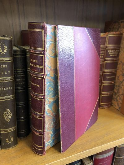 New York: Dodd, Mead, & Company, 1894. No Edition Given. Hardcover. Octavo, 358 pages; G-; contempor...