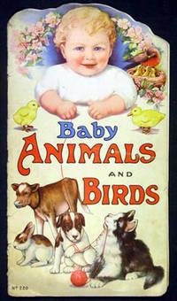 Baby Animals and Birds