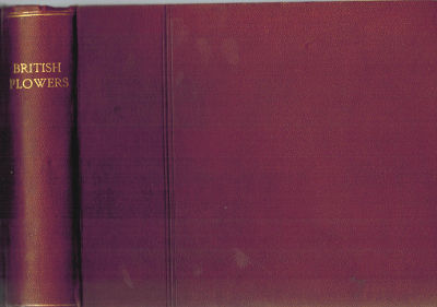 England, 1906-1913. Maroon cloth. Very Good. Oblong 8vo (17.5 x 21.3 cm). Maroon cloth binding with ...
