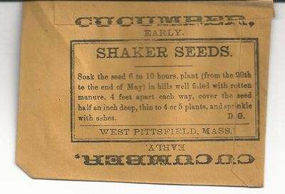 Cucumber, Early. Shaker Seeds... West Pittsfield, Mass. 4