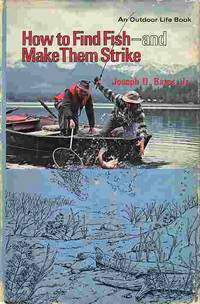 image of How To Find Fish And Make Them Strike