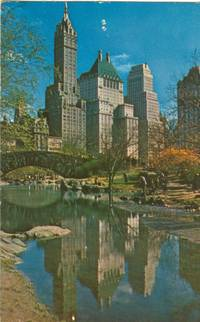 Fifth Avenue Hotels from Central Park, New York unused Postcard