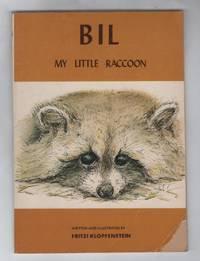 Bil: My Little Raccoon