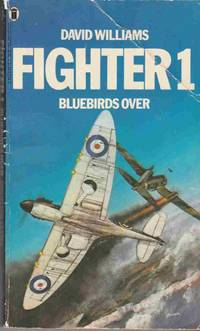 Fighter 1: Bluebirds Over