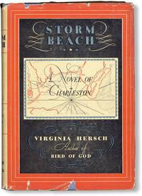 image of Storm Beach: A Novel of Charleston