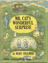 Mr. Cat's Wonderful Surprise