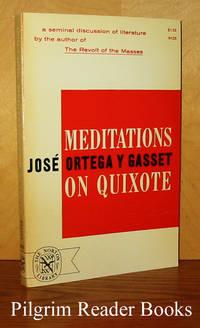 Meditations on Quixote.