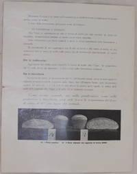 S.M.I.R.  FARINA DI PURO MALTO NAZIONALE AD ALTO POTERE IN DIASTASI  SPECIALE PER PANIFICAZIONE...