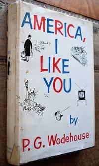 image of America, I Like You