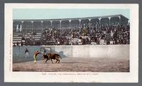 image of 1902 Mexican Bull Fight Postcard Placing the Banderillos