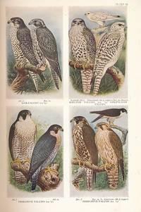 The Handbook of British Birds. Volume III. Hawks to Ducks