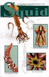 Illustrated Dissection Guide to the Squid