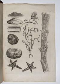 Epistola Selectas de re naturali obervationes complectens accessere ex historia naturali curiosa