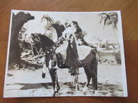 """Original Photograph- Rudolph Valentino, Mounted On His Horse, In """"The Sheik"""" 1921"""