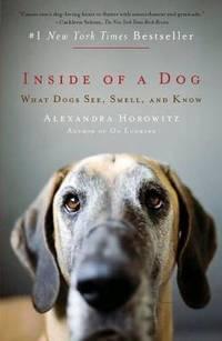 image of Inside of a Dog