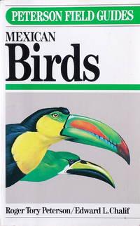 Mexican birds