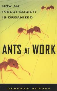 image of Ants at Work: How Insect Society Is Organized