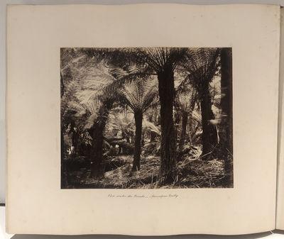 Melbourne, Australia c. 1860 Albumen...