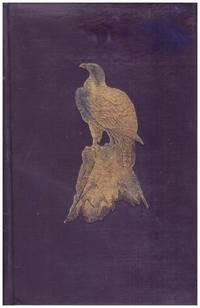 image of OUR RARER BIRDS.