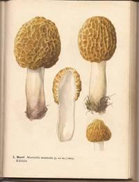 image of A Handbook of Mushrooms