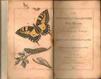 The Butterfly Collector's Vade Mecum ; With a Synoptical Table of British Butterflies