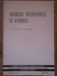 Growing Raspberries in Vermont