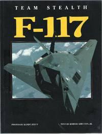 image of Team Stealth F-117
