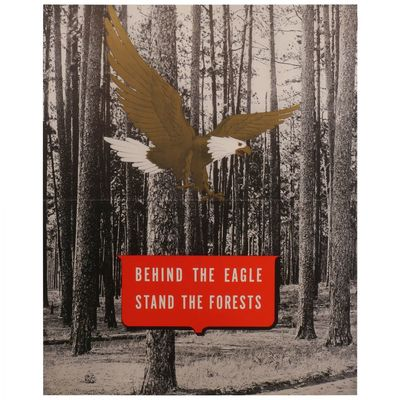 Behind the Eagle Stand the Forests