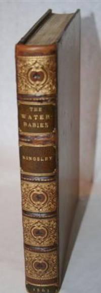image of The Water Babies - A Fairy Tale for a Land-Baby
