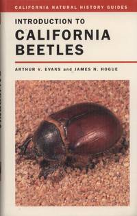image of Introduction to California Beetles