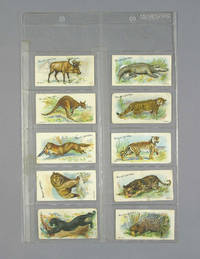W. D. & H. O Wills Cigarette Cards - Animals Of The World