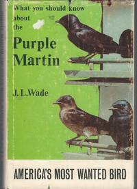 What You Should Know About the Purple Martin : America's Most Wanted Bird